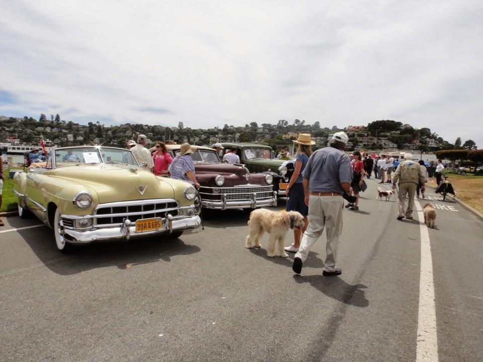 Tiburon Car Show. photo: M.Uz