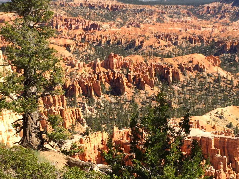 The beauty of Bryce falls away from the main road